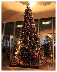 グランド ハイアット 東京 Share the Joy クリスマスツリー